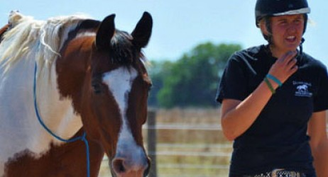 horse-sanctuary-rescue-16-hands-florida-prima-jade-3